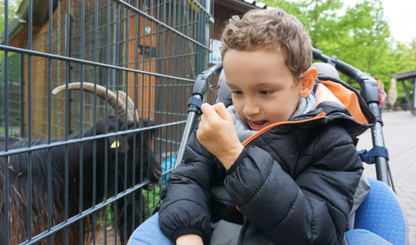 Luca beim Füttern einer Ziege.