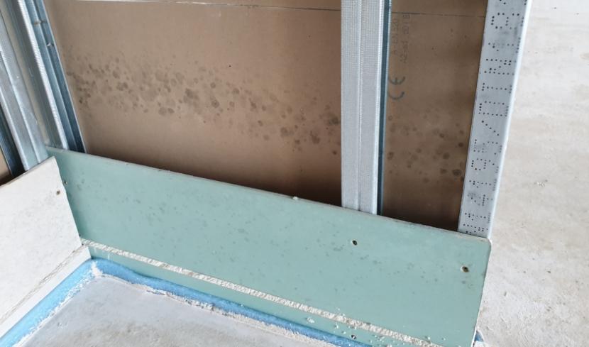 In einem Neubau schimmelt während der Bauphase. Oberhalb des Fließestrichbodens haben sich auf einer unverputzten Gipskartonplatten-Wand etliche Schimmelkolonien gebildet.