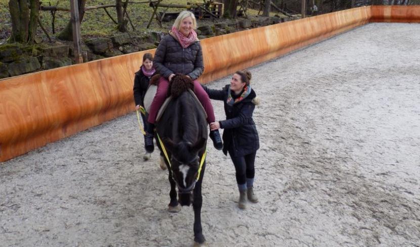 Das Pferd, die Patientin, die Pferdeführerin und die Therapeutin