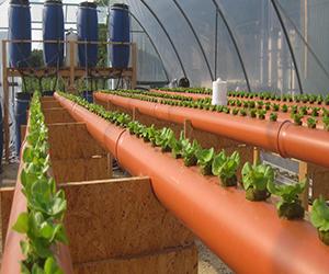 Die Zukunft der Landwirtschaft: Recyceltes Abwasser