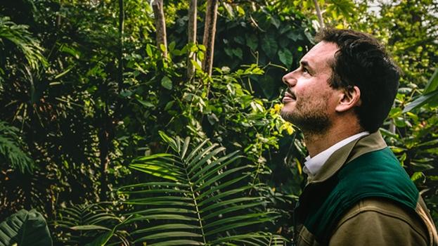 Metropolitan Jungle