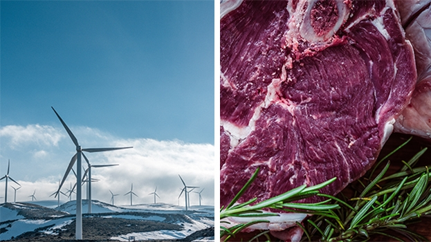 Ja zu Umweltschutz – Nein zu Fleisch?