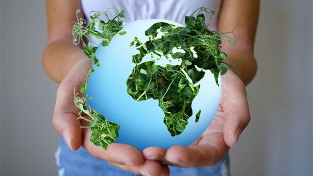 Vegan für die Umwelt?